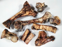 bisonmarrowboneswholesale_cat